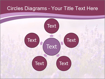 Lavender flowers PowerPoint Templates - Slide 78