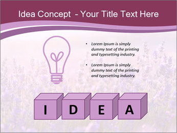 Lavender flowers PowerPoint Templates - Slide 80
