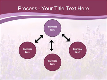 Lavender flowers PowerPoint Templates - Slide 91