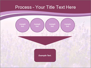 Lavender flowers PowerPoint Templates - Slide 93