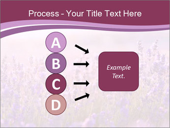Lavender flowers PowerPoint Templates - Slide 94