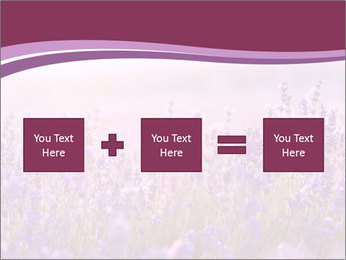 Lavender flowers PowerPoint Templates - Slide 95