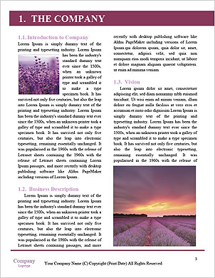 0000094322 Word Template - Page 3