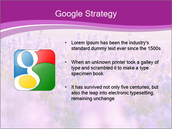 Lavender Field PowerPoint Template - Slide 10