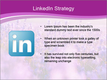 Lavender Field PowerPoint Template - Slide 12