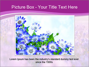 Lavender Field PowerPoint Template - Slide 15