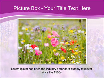 Lavender Field PowerPoint Template - Slide 16