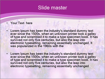 Lavender Field PowerPoint Template - Slide 2