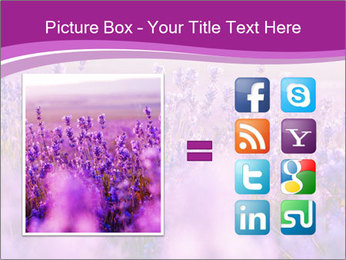 Lavender Field PowerPoint Template - Slide 21