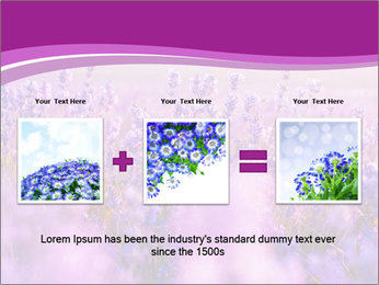 Lavender Field PowerPoint Template - Slide 22