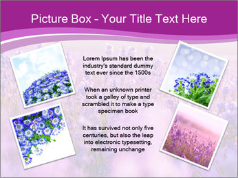 Lavender Field PowerPoint Template - Slide 24