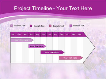 Lavender Field PowerPoint Template - Slide 25