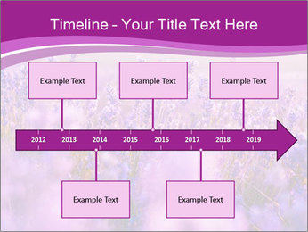 Lavender Field PowerPoint Template - Slide 28