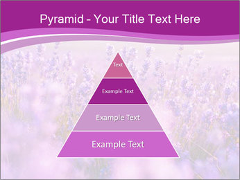 Lavender Field PowerPoint Template - Slide 30