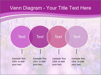 Lavender Field PowerPoint Template - Slide 32