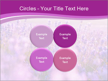 Lavender Field PowerPoint Template - Slide 38