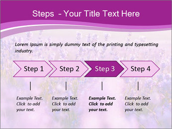 Lavender Field PowerPoint Template - Slide 4