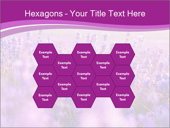 Lavender Field PowerPoint Template - Slide 44