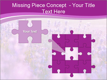 Lavender Field PowerPoint Template - Slide 45