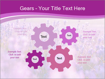 Lavender Field PowerPoint Template - Slide 47