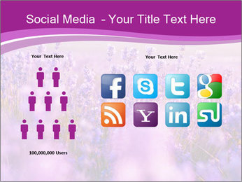 Lavender Field PowerPoint Template - Slide 5
