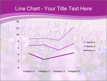 Lavender Field PowerPoint Template - Slide 54
