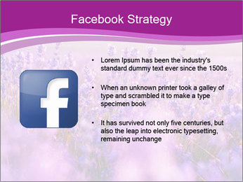 Lavender Field PowerPoint Template - Slide 6