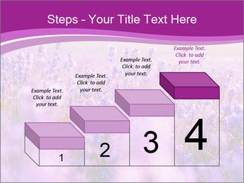 Lavender Field PowerPoint Template - Slide 64