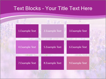 Lavender Field PowerPoint Template - Slide 68