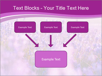 Lavender Field PowerPoint Template - Slide 70