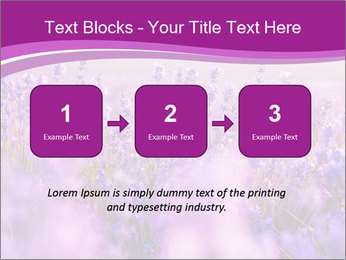 Lavender Field PowerPoint Template - Slide 71
