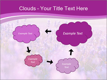 Lavender Field PowerPoint Template - Slide 72