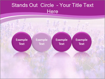Lavender Field PowerPoint Template - Slide 76