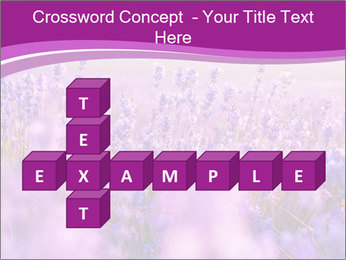 Lavender Field PowerPoint Template - Slide 82
