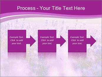 Lavender Field PowerPoint Template - Slide 88