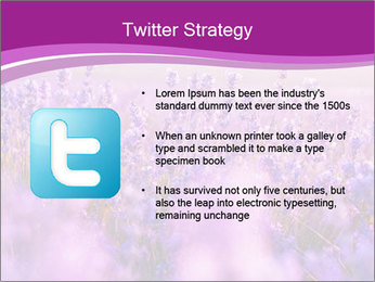 Lavender Field PowerPoint Template - Slide 9