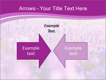 Lavender Field PowerPoint Template - Slide 90