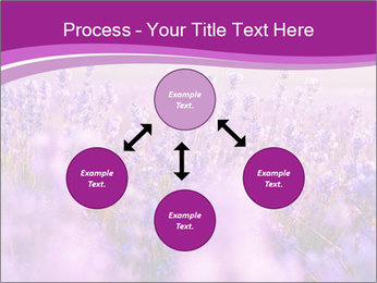 Lavender Field PowerPoint Template - Slide 91