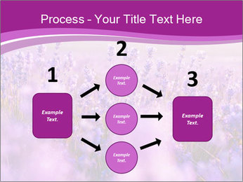 Lavender Field PowerPoint Template - Slide 92
