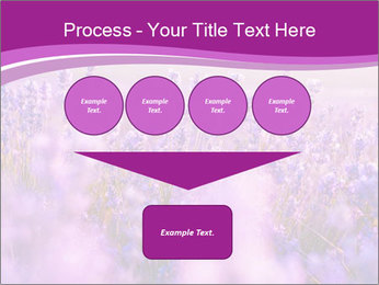 Lavender Field PowerPoint Template - Slide 93