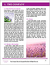 0000094328 Word Template - Page 3