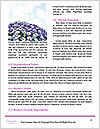 0000094328 Word Template - Page 4