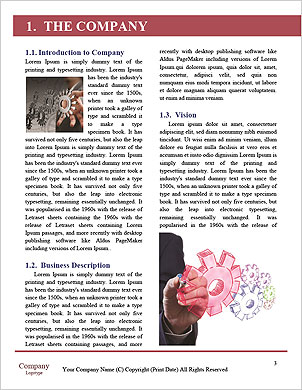 0000094331 Word Template - Page 3