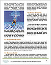 0000094340 Word Template - Page 4