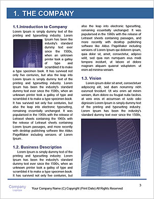0000094344 Word Template - Page 3
