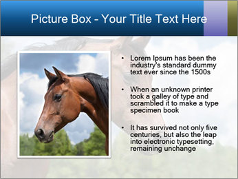 Horse mare PowerPoint Templates - Slide 13