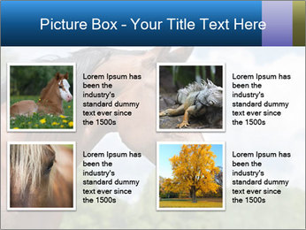 Horse mare PowerPoint Templates - Slide 14