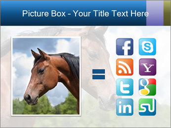 Horse mare PowerPoint Templates - Slide 21