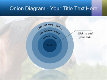 Horse mare PowerPoint Templates - Slide 61