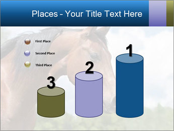 Horse mare PowerPoint Templates - Slide 65